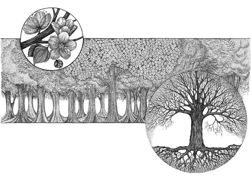 Entregue o desenho, imagem gráfica na florescência da árvore do tema ilustração do vetor