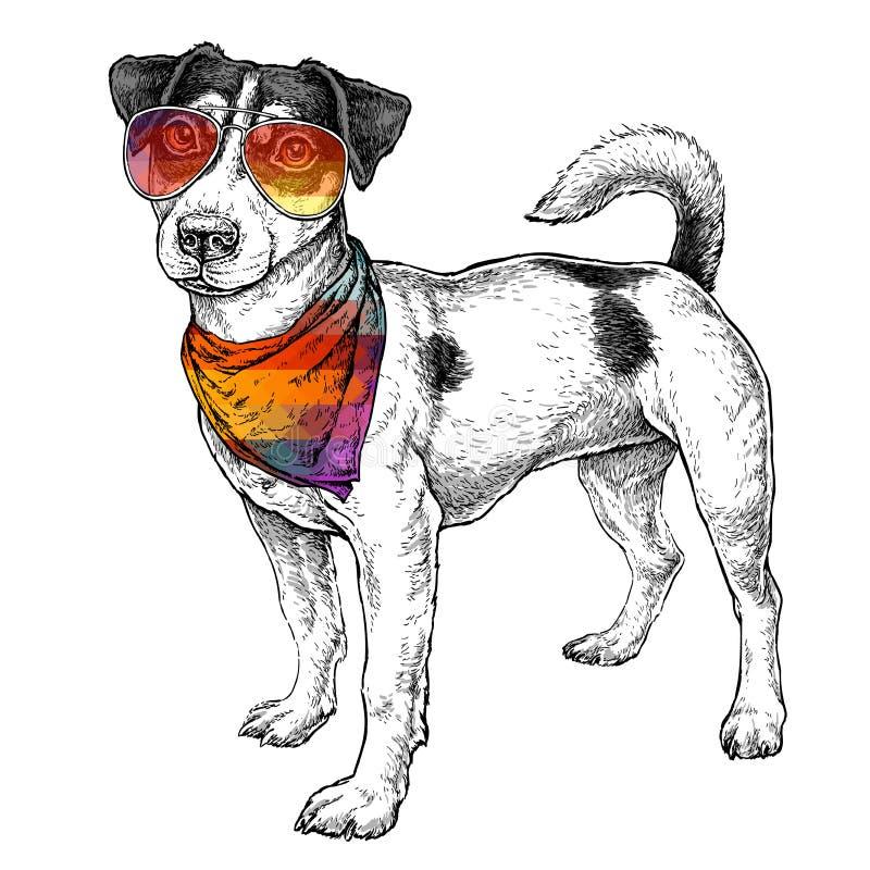 Entregue o esboço tirado do estilo do moderno de Jack Russell Terrier engraçado bonito nos vidros e com bandana Ilustração do vet ilustração royalty free