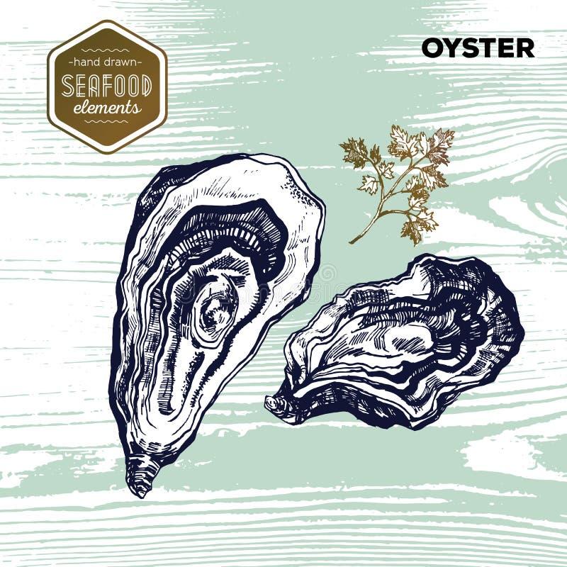 Entregue o marisco tirado do esboço das ostras e da salsa ilustração do vetor