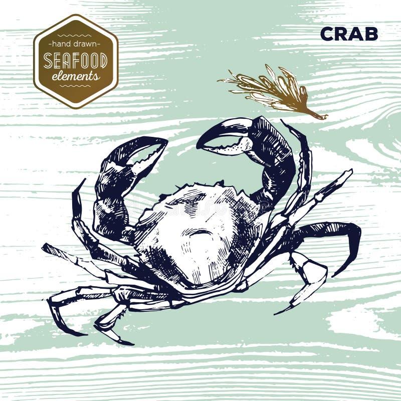 Entregue o marisco tirado do esboço do caranguejo e dos oréganos ilustração royalty free