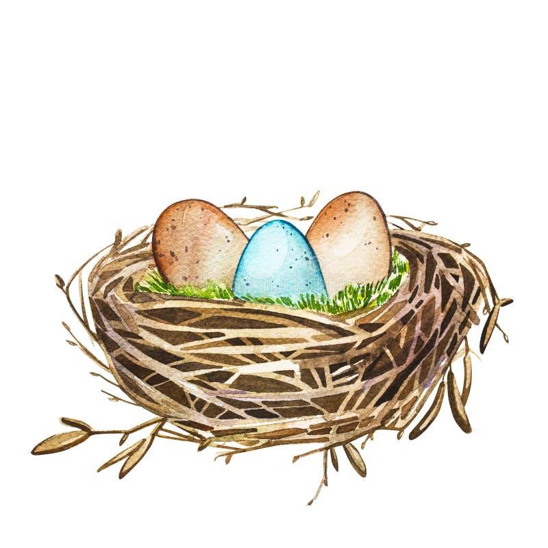 Entregue o ninho tirado com ovos, projeto do pássaro da arte da aquarela de easter Impressão digital ilustração royalty free