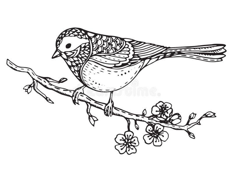 Entregue o pássaro ornamentado tirado no ramo de sakura com flores ilustração royalty free
