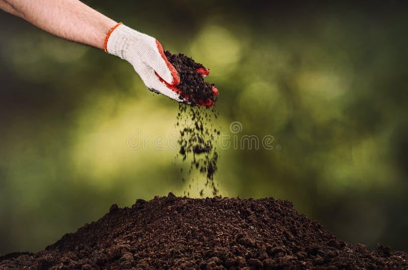 Entregue o solo preto de derramamento no fundo do bokeh da planta verde fotografia de stock