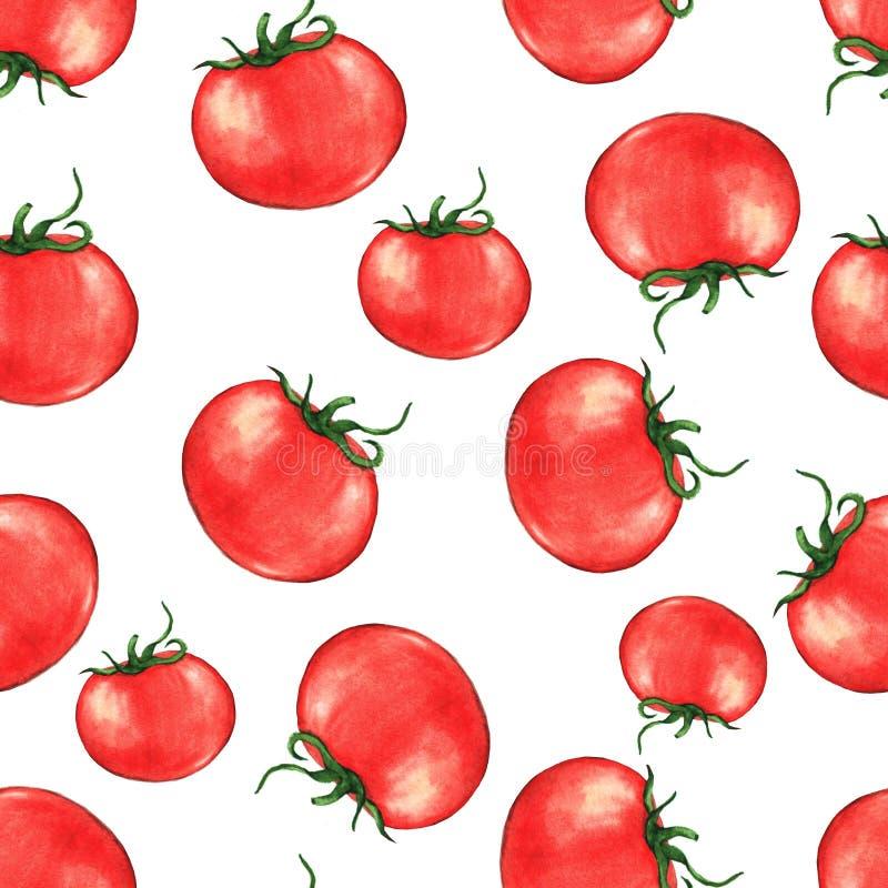 Entregue o teste padrão repetido sem emenda tirado com os tomates vermelhos maduros da aquarela fotos de stock royalty free