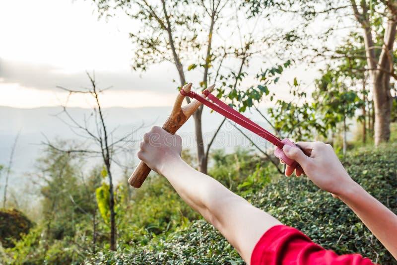 Entregue puxar o estilingue para a semente da árvore do tiro na floresta fotografia de stock