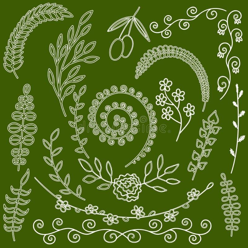 Entregue a silhueta floral tirada das ervas do jardim dos elementos e das plantas da samambaia jardim de ervas selvagem ilustração stock