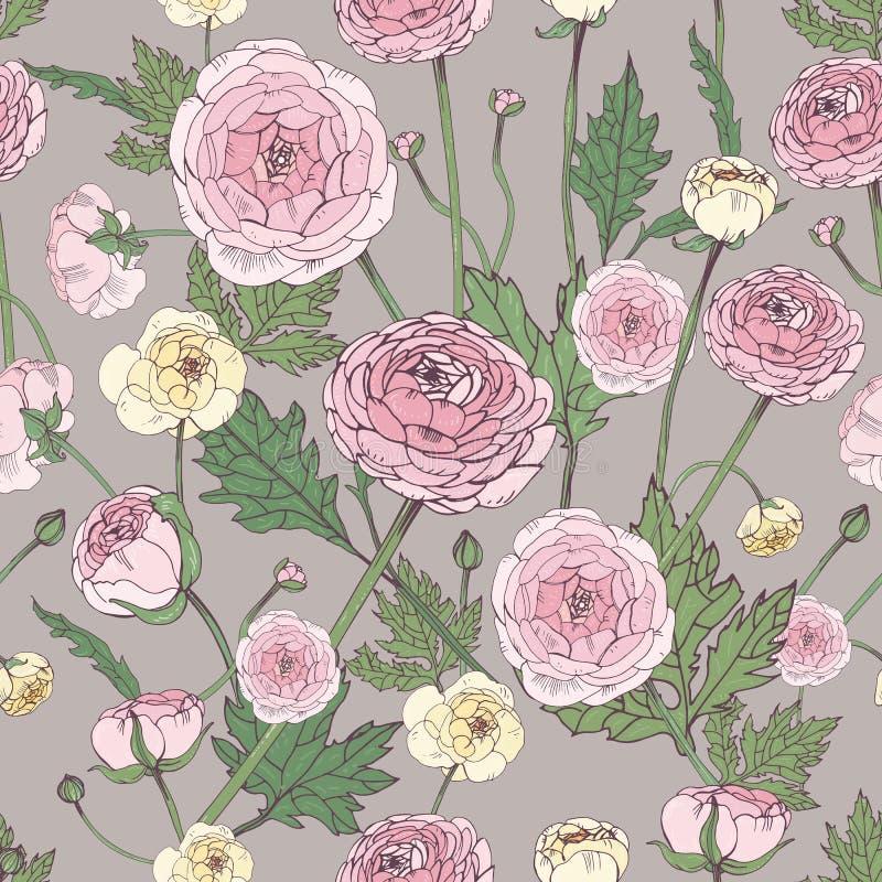 Entregue a vintage tirado o teste padrão sem emenda colorido floral com flor do ranúnculo ilustração royalty free