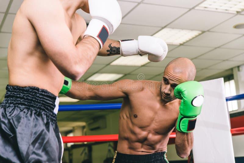 Entrenamiento de dos boxeadores imagen de archivo