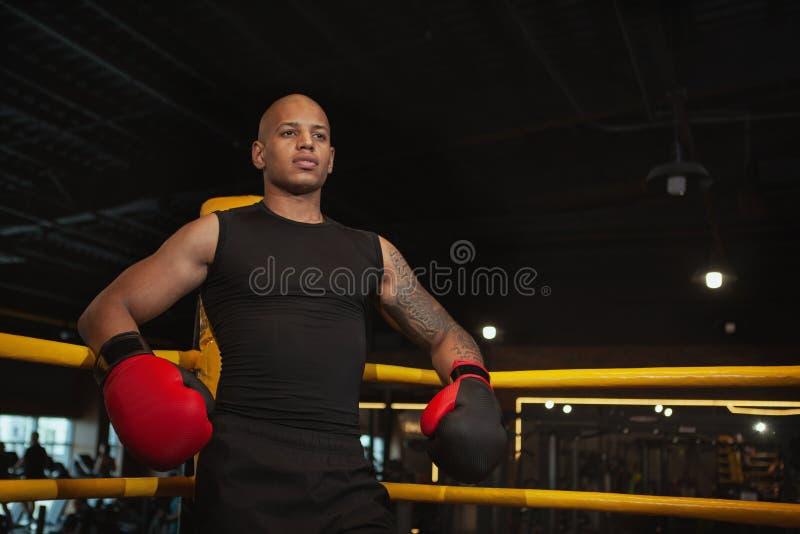 Entrenamiento de encajonamiento masculino africano hermoso del combatiente en el gimnasio imagen de archivo libre de regalías