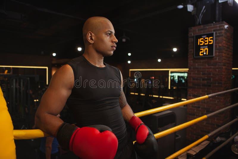 Entrenamiento de encajonamiento masculino africano hermoso del combatiente en el gimnasio foto de archivo