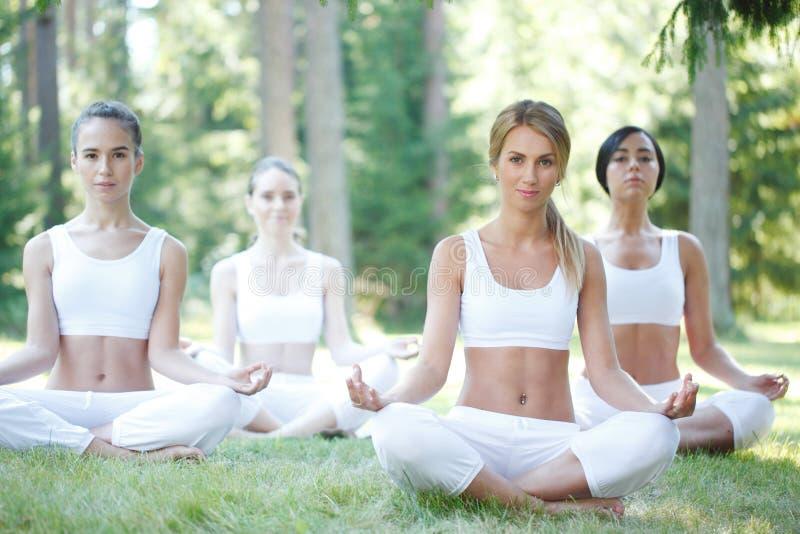 Entrenamiento de la yoga en el parque imágenes de archivo libres de regalías