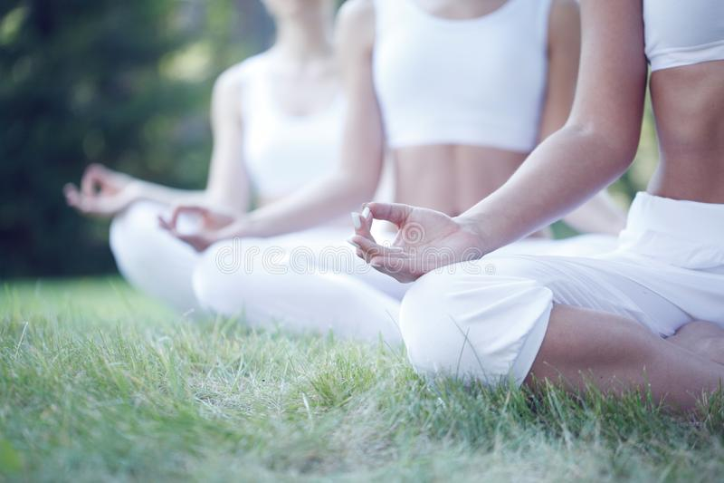 Entrenamiento de la yoga en el parque imagen de archivo