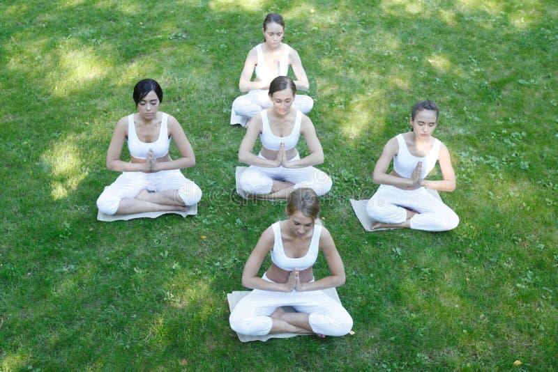 Entrenamiento de la yoga en el parque fotos de archivo libres de regalías