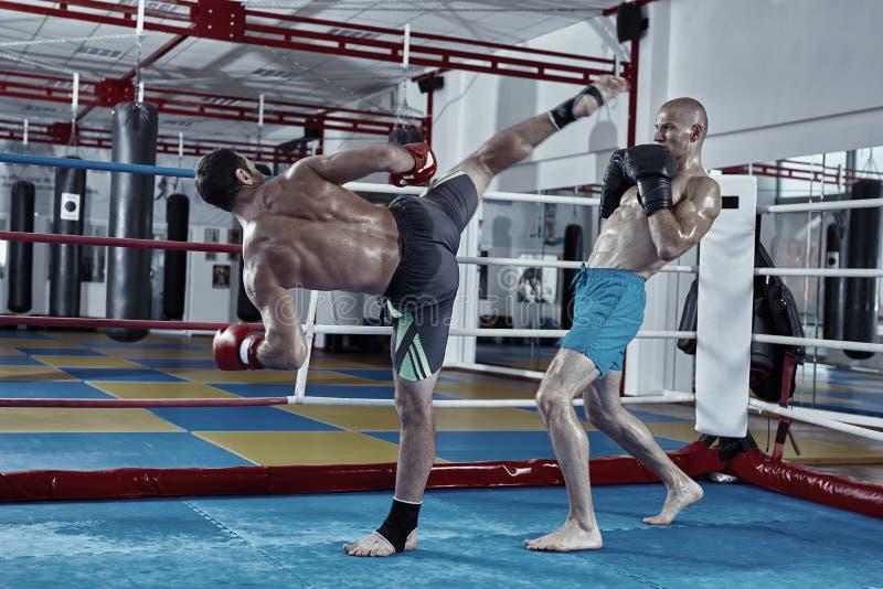 Entrenamiento de los combatientes de Kickbox en el anillo imagen de archivo libre de regalías