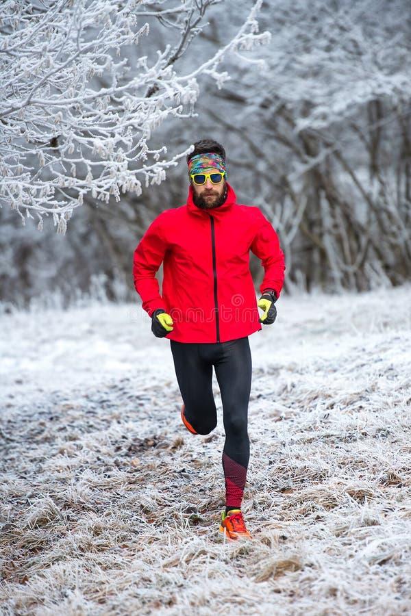 Entrenamiento de un rastro del corredor en el frío en la helada imagen de archivo