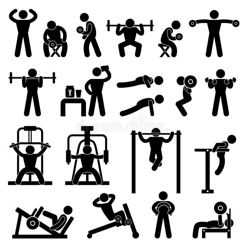 Entrenamiento del ejercicio del edificio de carrocería del gimnasio de la gimnasia ilustración del vector
