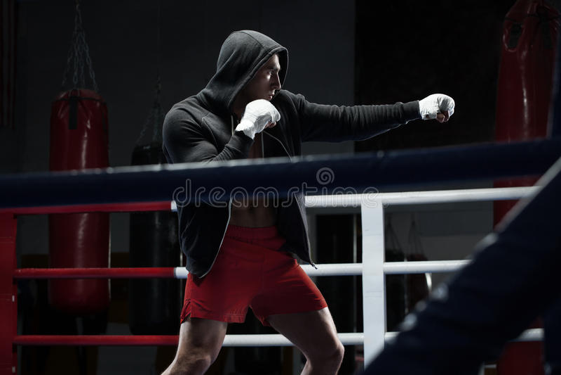 Entrenamiento del hombre del boxeador en ring de boxeo Combatiente del boxeo en sudadera con capucha imagen de archivo libre de regalías
