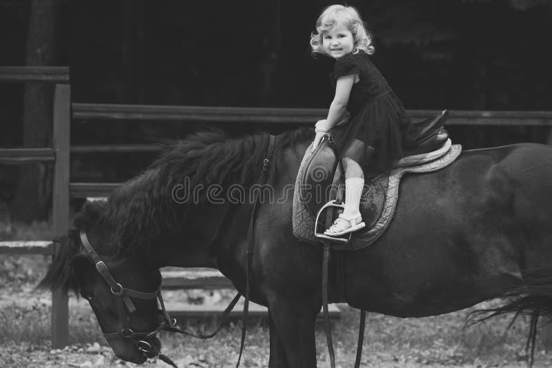 Entrenamiento del montar a caballo El niño se sienta en silla de montar del jinete en la parte posterior del animal imagen de archivo