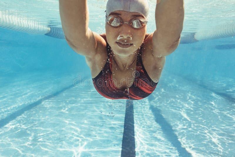 Entrenamiento del nadador en la piscina fotos de archivo libres de regalías