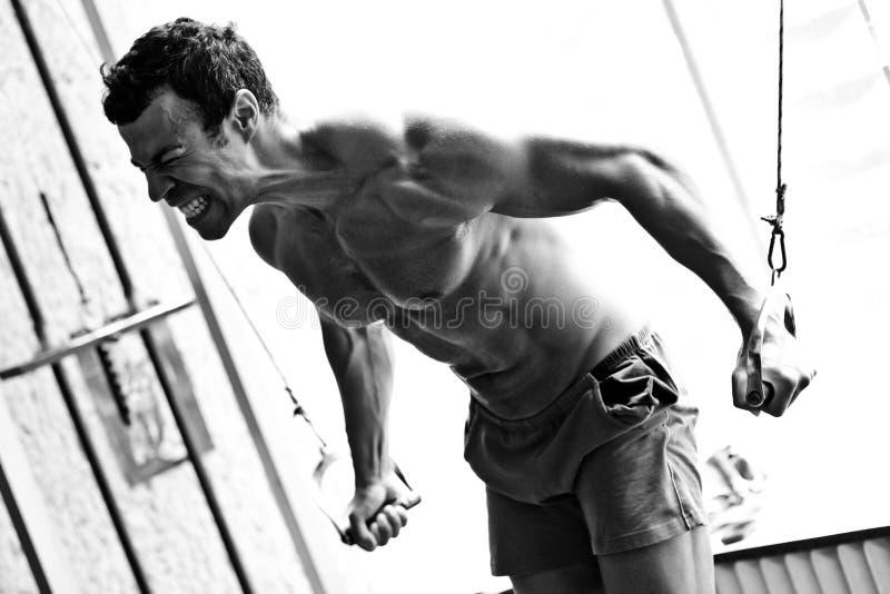 Entrenamiento duro del Bodybuilder en la gimnasia imagen de archivo libre de regalías