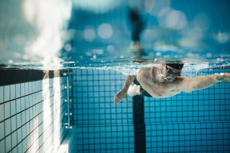 Entrenamiento masculino joven apto del nadador en la piscina foto de archivo