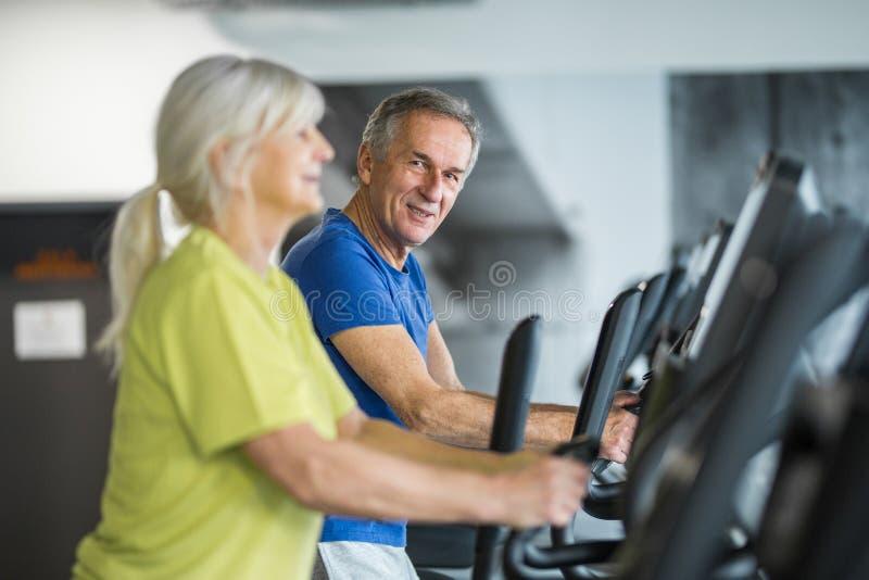 Entrenamiento mayor feliz de los pares en la escalera de pasos en el gimnasio imagen de archivo libre de regalías