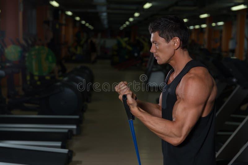 Entrenamiento muscular del atleta en club de fitness imagenes de archivo