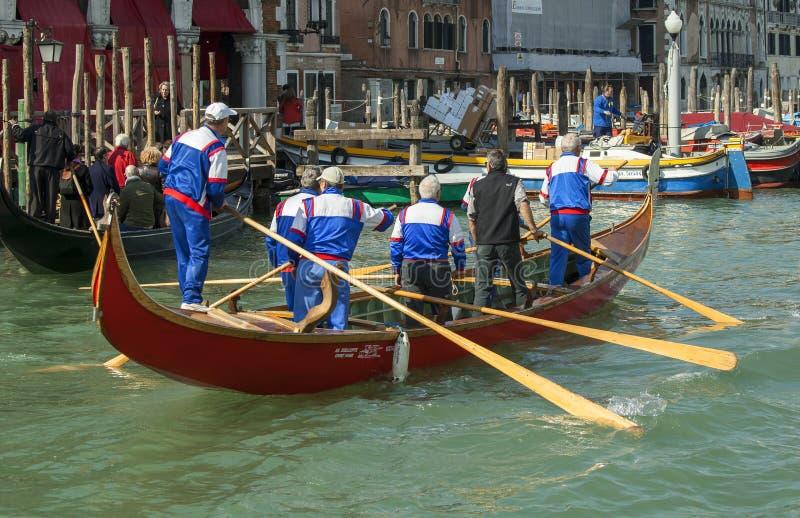 Entrenamiento para la regata de Vogalonga en Venecia fotografía de archivo