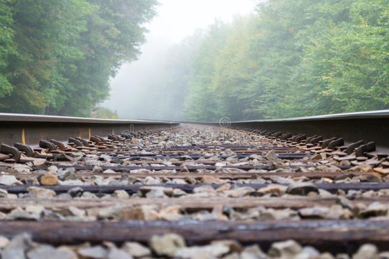 Entrene a la vía en la niebla imagen de archivo