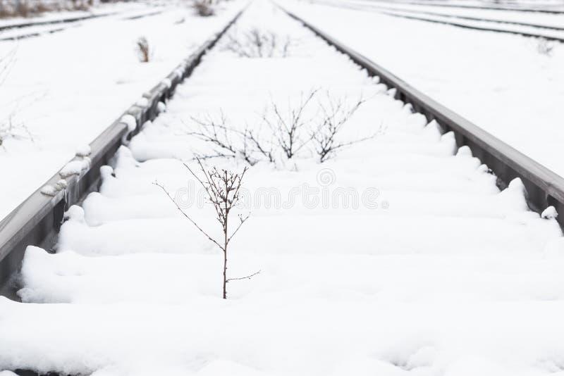 Entrene a los carriles, vía cubierta con nieve durante invierno imagenes de archivo