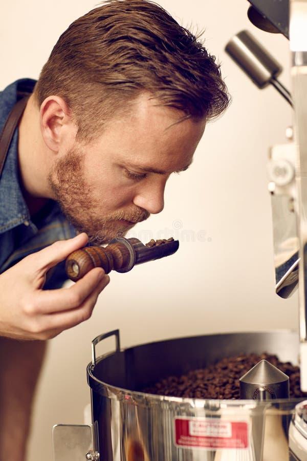 Entrepreneur sentant les grains de café fraîchement rôtis pour l'aromati photo libre de droits