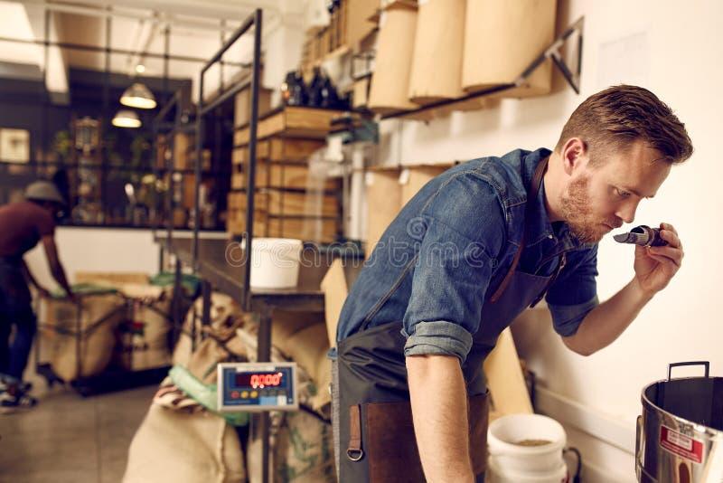 Entrepreneur vérifiant l'arome du grain de café fraîchement rôti photographie stock libre de droits