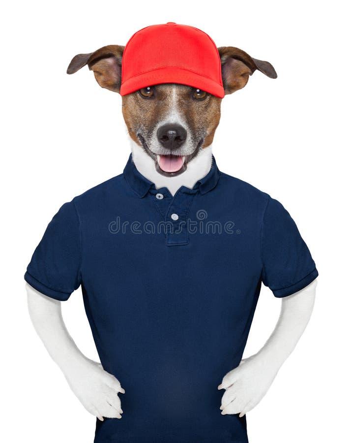 Entretenez le chien images libres de droits