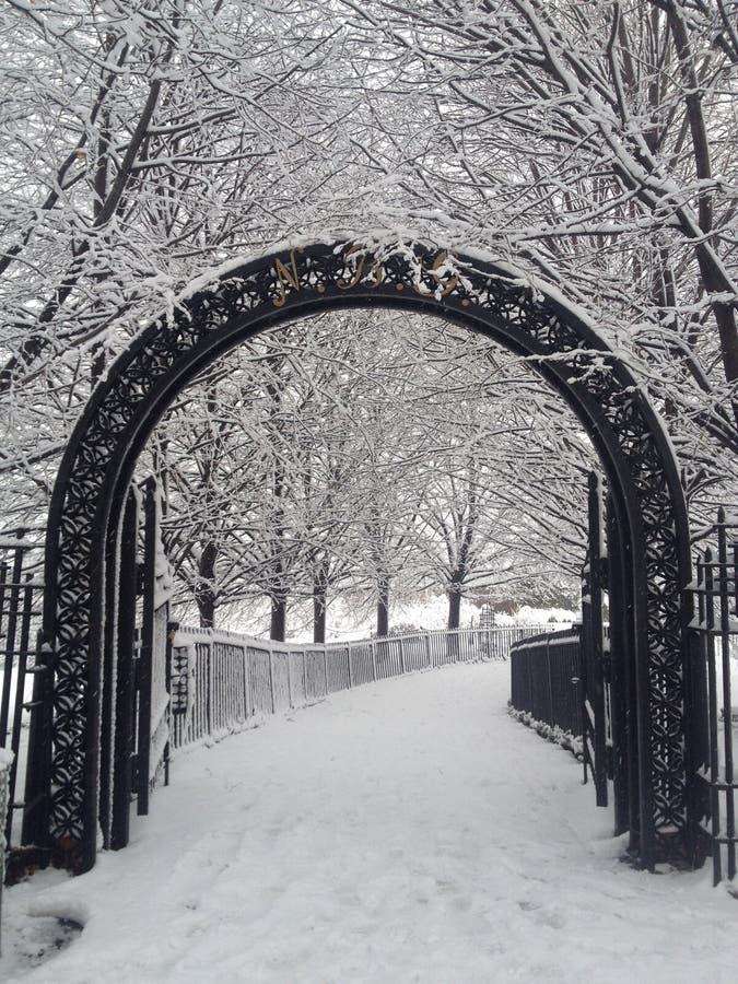 Entrez en le mon pays des merveilles d'hiver images stock
