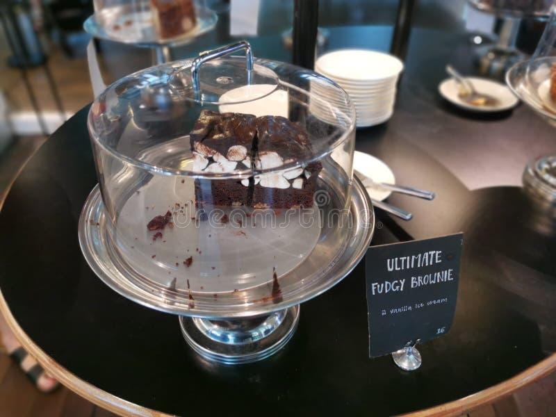 Entscheidender Fudgy-Schokoladenkuchen stockfotos
