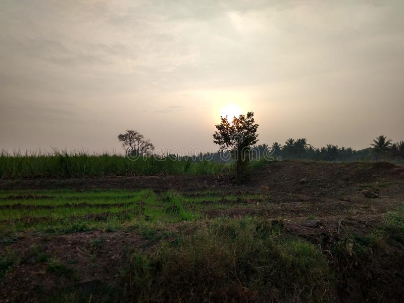 Entscheidender Sonnenaufgang lizenzfreie stockbilder