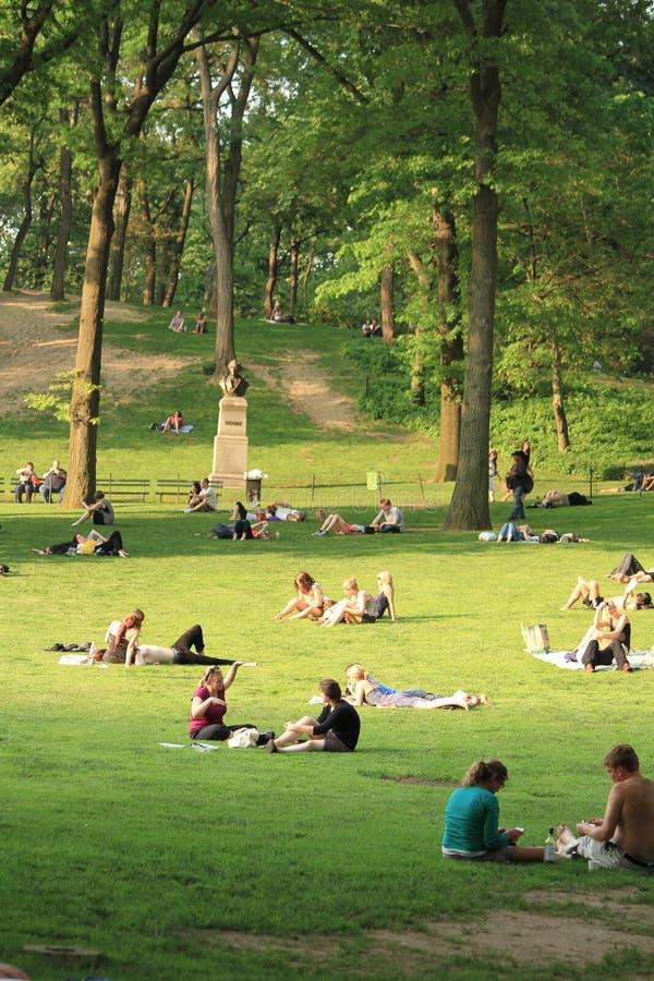 Entspannen Sie sich in Central Park - Sommer lizenzfreies stockbild