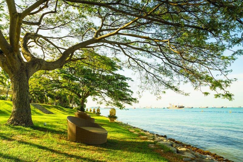 Entspannen Sie sich an der Küste lizenzfreies stockfoto