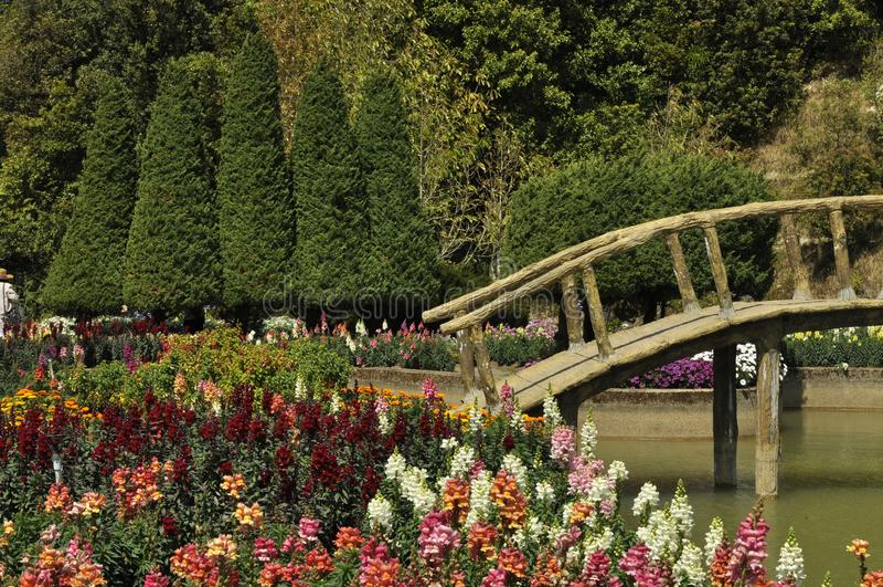 Entspannen Sie sich in einem Blumengarten lizenzfreies stockbild