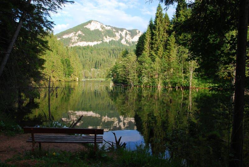 Entspannende Stelle bei Lacul Rosu stockbilder