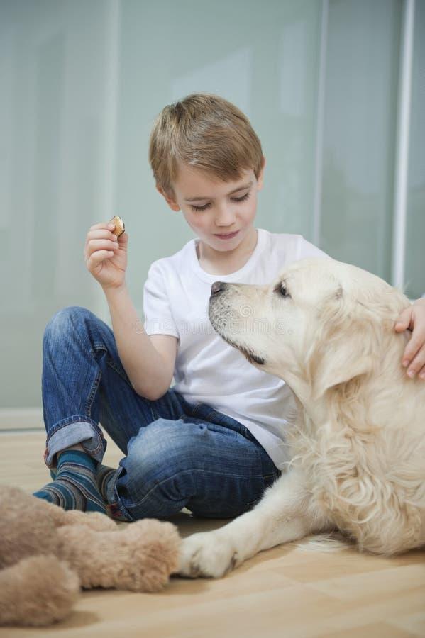 Entspannter Junge, der mit seinem Hund auf Boden sitzt stockfotos
