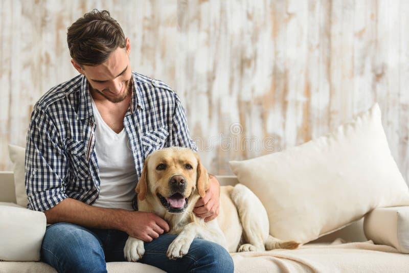 Entspanntes Labrador, das auf einem Sofa mit einem Inhaber liegt lizenzfreies stockfoto