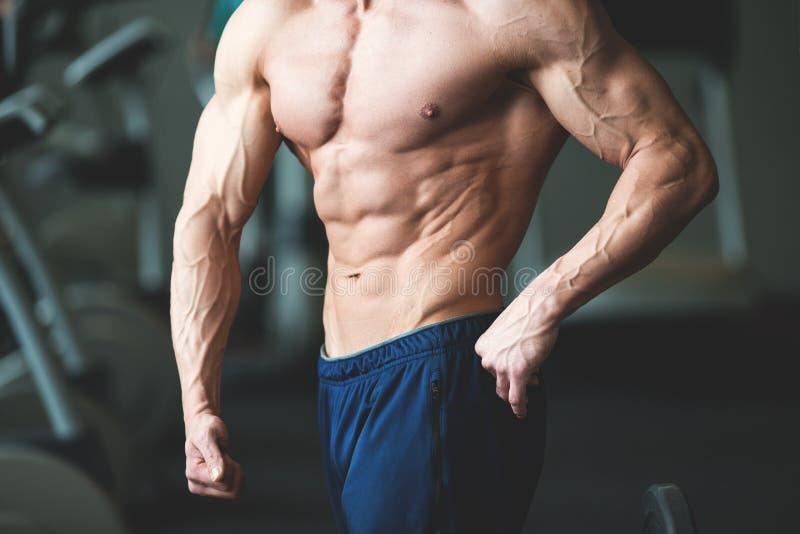 Entspannung durch pilates Kugel Muskulöser und sexy Torso des jungen Mannes, der perfekten sechs Satz-ABS, -bizeps und -kasten Bo stockfotografie