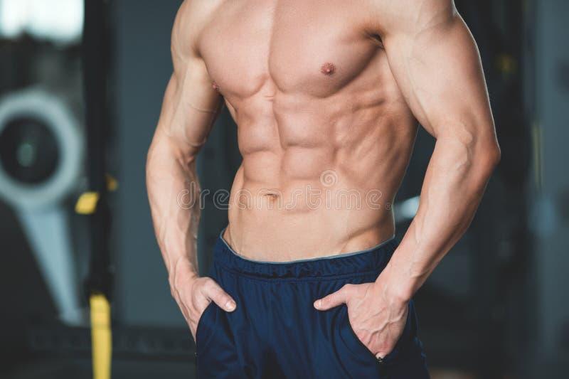 Entspannung durch pilates Kugel Muskulöser und sexy Torso des jungen Mannes, der perfekten sechs Satz-ABS, -bizeps und -kasten Bo lizenzfreie stockbilder
