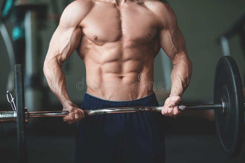 Entspannung durch pilates Kugel Muskulöser und sexy Torso des jungen Mannes, der perfekten sechs Satz-ABS, -bizeps und -kasten Bo lizenzfreies stockbild