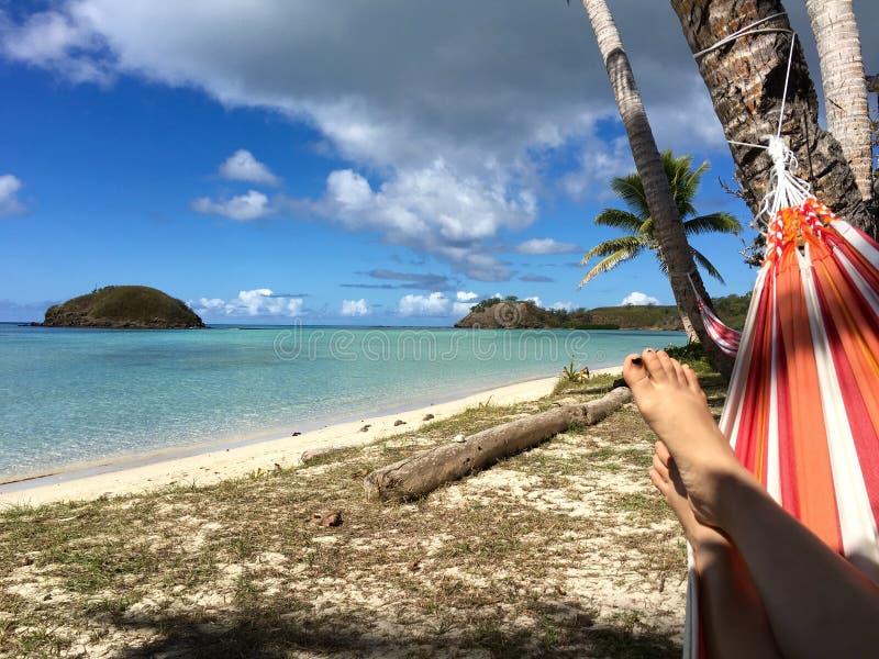 Entspannung unter Kokosnussbaumschatten auf bunter Hängematte stockfoto