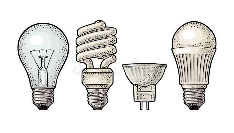 Entwicklungsart elektrische Lampe Glühbirne, Halogen, cfl und geführt vektor abbildung