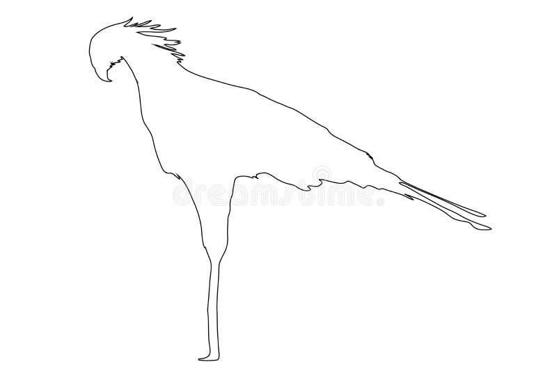 Entwurf eines afrikanischen Sekretärs Bird vektor abbildung