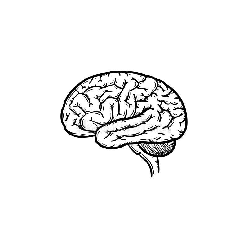 Entwurfsgekritzelikone des menschlichen Gehirns Hand gezeichnete lizenzfreie abbildung