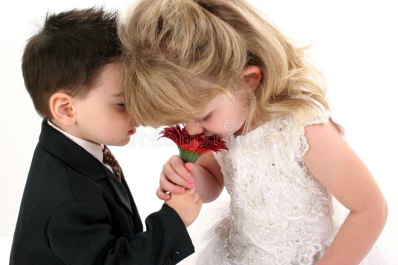 Entzückende junge Kinder, die zusammen Gänseblümchen riechen lizenzfreie stockbilder